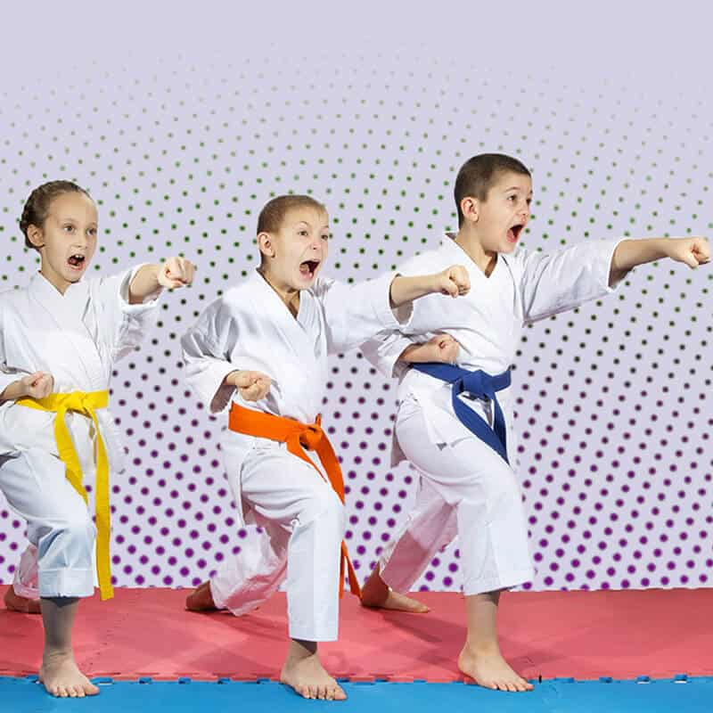 Martial Arts Lessons for Kids in _Citrus Heights_ _CA_ - Punching Focus Kids Sync